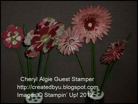 _cheryl_algie_Guest_Stmpers2