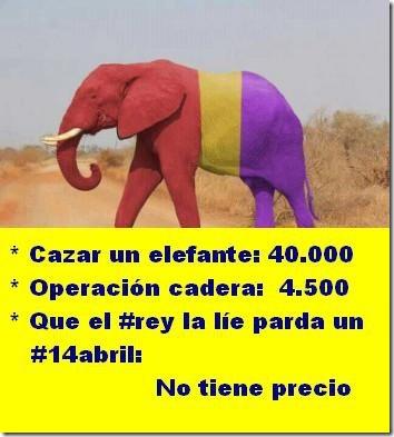 rey humor elefante