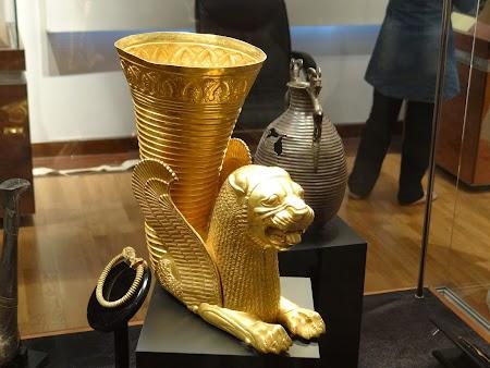 12. Riton de aur.JPG