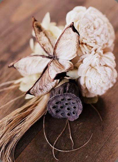 balsa wood 994581_563298917065873_1319664204_n bare root flora