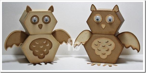 OwlBox wm