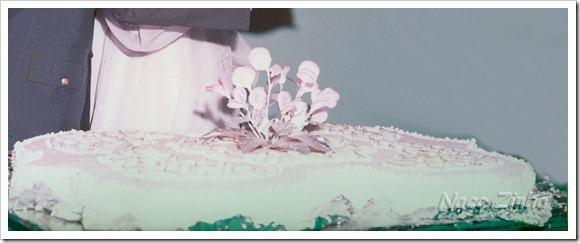 casamento_bolo_g
