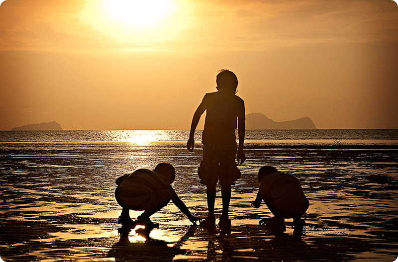 Silhouette-Boys-hermit-crabs-(1)