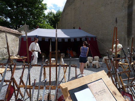 Turism in Romania: tabara cavalereasca