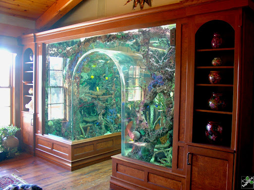 Aquarium Headboard l-shaped wall aquarium | dream home | pinterest | wall aquarium