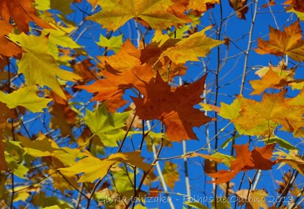 Glória Ishizaka - Outono 2013 - 21