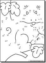 000 - mapache- blogcolorear.com
