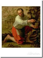 jacob-gerritsz-cuyp-vine-grower-1628