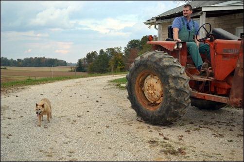 Kodi following the tractor