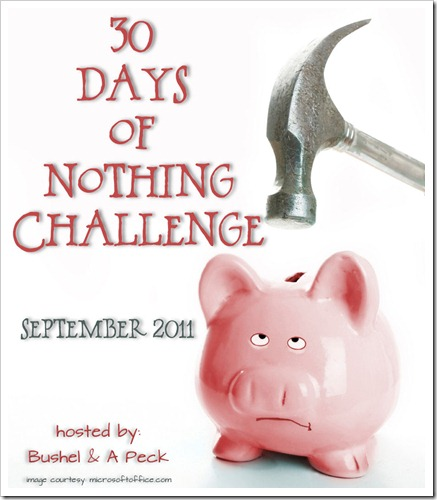 30-Days of Nothing Challenge