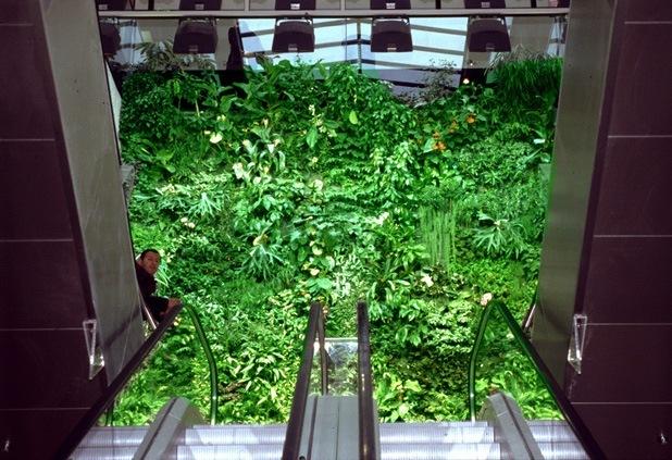 vertical garden by patrick blanc 9