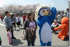 Cherry Blossom Festival Korea 035