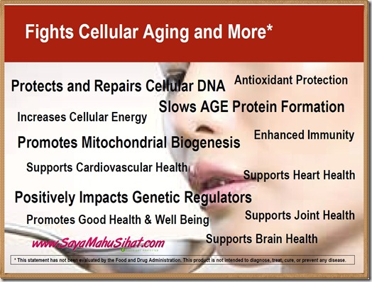Fights Cellular Aging and More_Vivix Shaklee