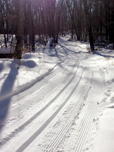 Roy's Run fresh tracked Thursday afternoon