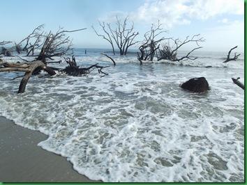 Last day at Hunting Island 040