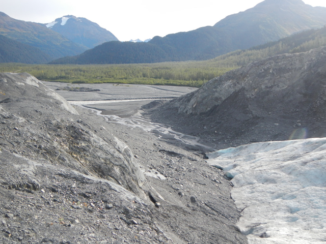 A melting tongue of Exit Glacier near Seward, Alaska, continues to dwindle and pour water into streams below, as it has been doing for decades. Photo: OSU