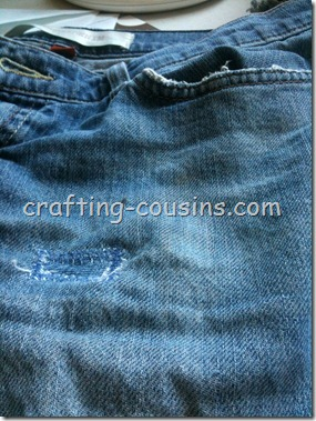 Mending Shorts (12)