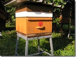 Celkový pohled na modifikonaný úl.
