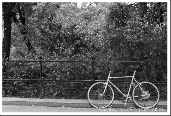vienna bikes02-47