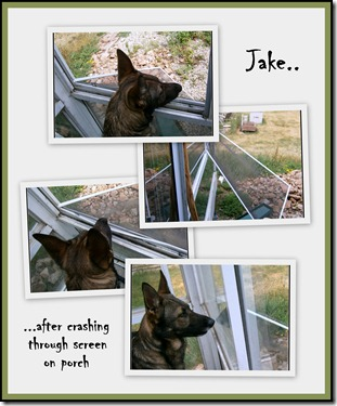2012.6.24 Jake
