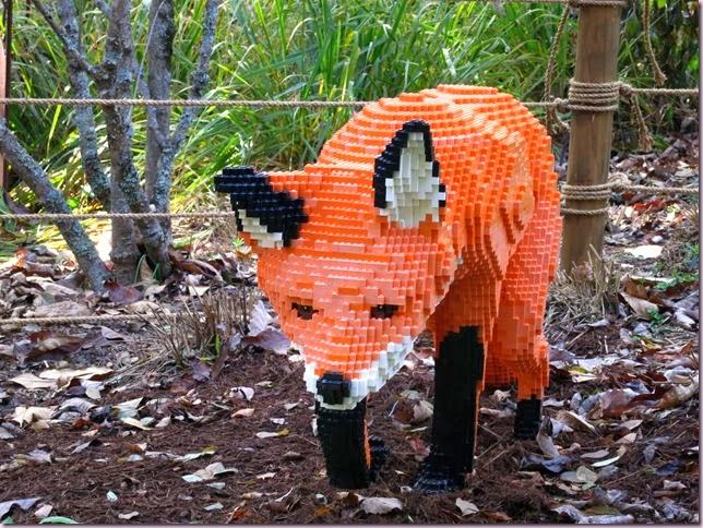 foxcloseIMG_8147