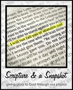 scripture and a snapshot