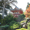 San Fran Japanese Tea Garden