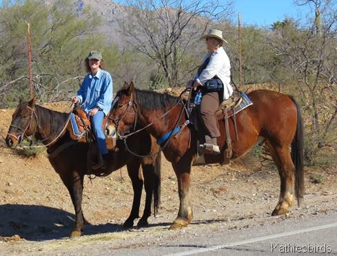 1. IMG_3075 cowgirls-Dom