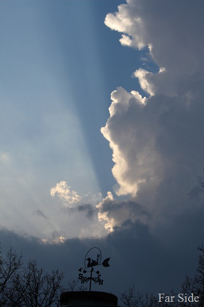 Awesome Light and Thunderhead