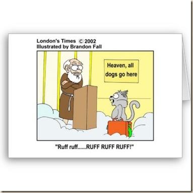 dios cielo paraiso jesus ateismo religion humor grafico (17)