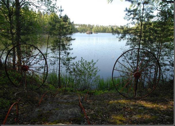 haukijärvi sudenkorento 057