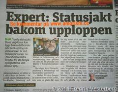 bm-image-768023 om kravaller. Tidningen Metro den 140826. Med amorism