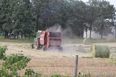 Todd making hay