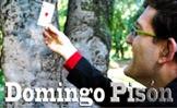 Domingo Pisón