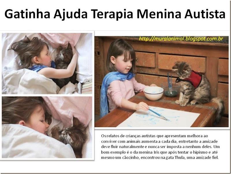 Gatinha Ajuda Terapia Menina Autista
