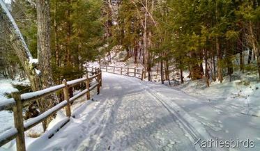 15. trail 1-16-15