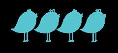 4Birds