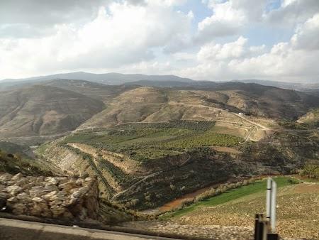 22. Peisaj rural Iordania.JPG