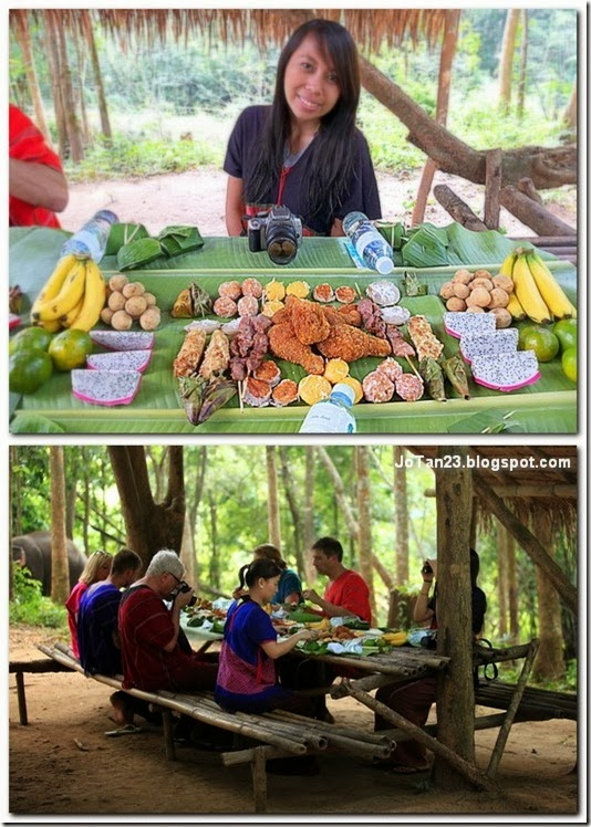 things-to-do-in-chiang-mai-patara-elephant-farm