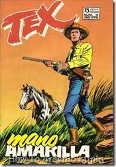 P00003 - Tex - E. Zinco #3