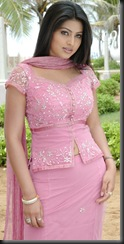 Sneha in rose dress