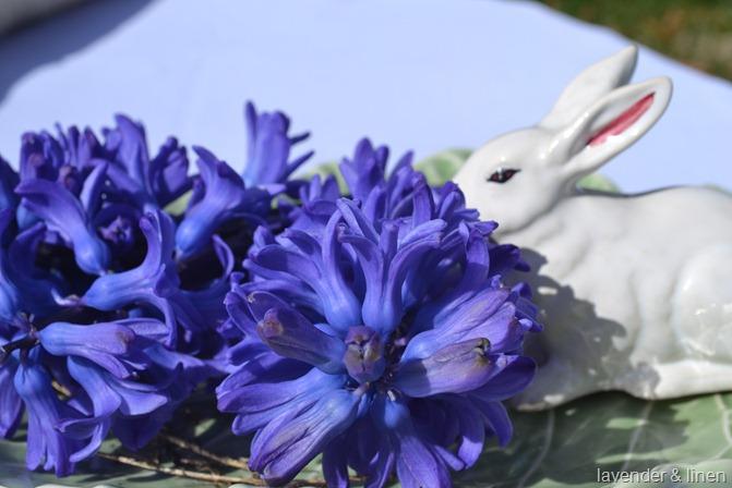 Easter 061