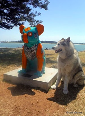 Painted Koalas of Port Macquarie (1)