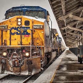 by Carol Plummer - Transportation Trains (  )