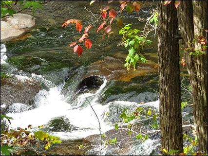 Bald River Falls, Cherokee Natl Forest