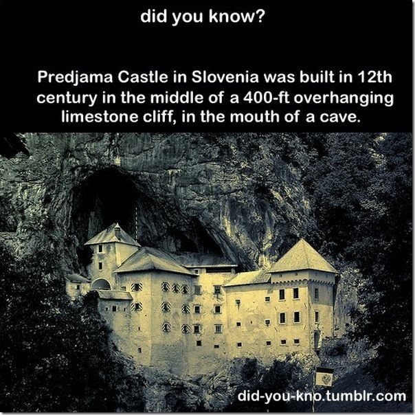 cool-trivia-facts-23