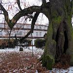 2012_12_16_Zimowego_krecenia_cd_30.JPG