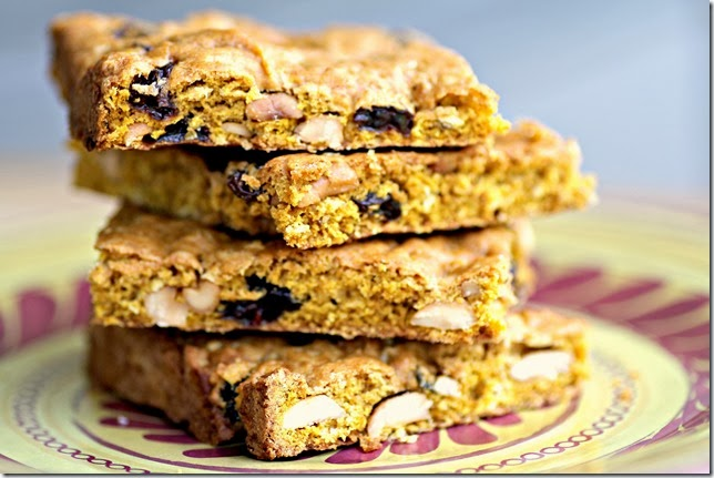 Pumpkin Raisin Bars3