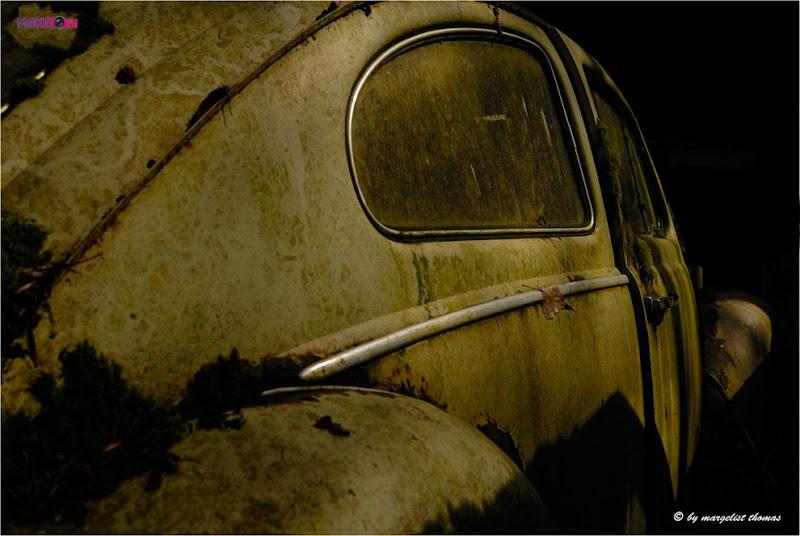cars_016.jpg