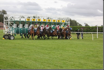 29_08_2014-17_56_49-3579Thirsk Race Course